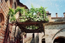 Хиландарская виноградная лоза <p>Виноградная Лоза Симеона Мироточивого известна по всему миру своим особенным свойством: она помогает бесплодным супругам, желающим зачать ребенка, а также болящим.<br />Лоза сохранилась поныне, каждый год приносит урожай и является духовным утешением для хиландарских монахов и всех православных, настоящим чудом Божьим. Монахи раздают высушенные чудодейственные ягоды всем желающим.</p>